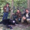 Ursos e burocratas