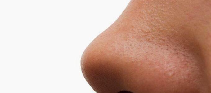 O segundo nariz